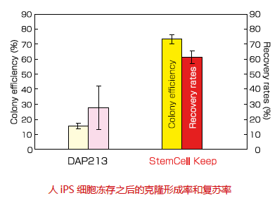 无DMSO干细胞冻存液