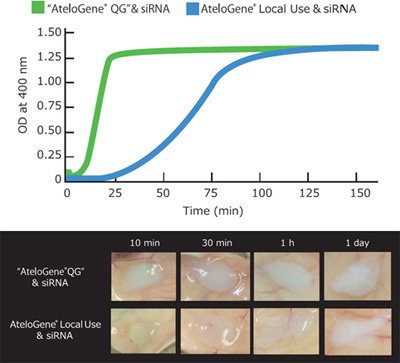 AteloGene® siRNA活体转染试剂盒