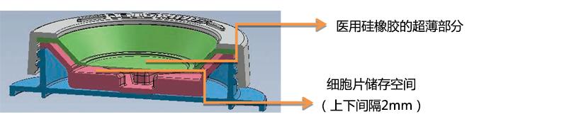 iP-TEC® 细胞片运输容器φ38、φ50