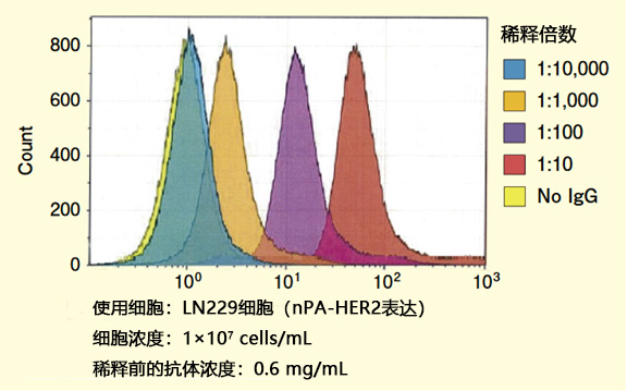 标记抗PA tag抗体