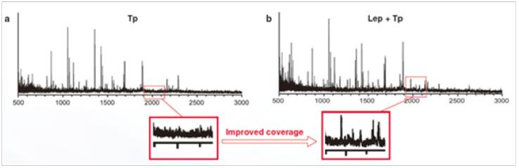 质谱级赖氨酰肽链内切酶