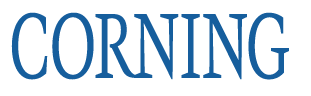 可溶性微载体                                                        美国Corning                                                        4979